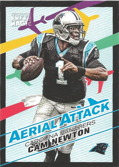 13 TM Cam Newton Aerial Attack